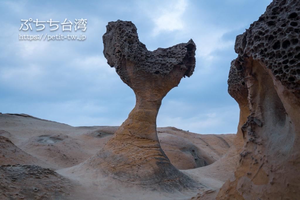 野柳地質公園のクジラのヒレ岩