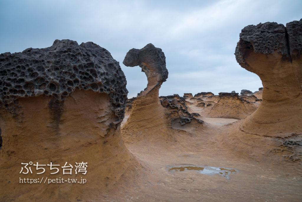 野柳地質公園のキュートプリンセス岩