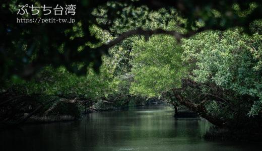 四草緑色隧道 マングローブが織りなす緑色のトンネルでミニクルーズ(台南)