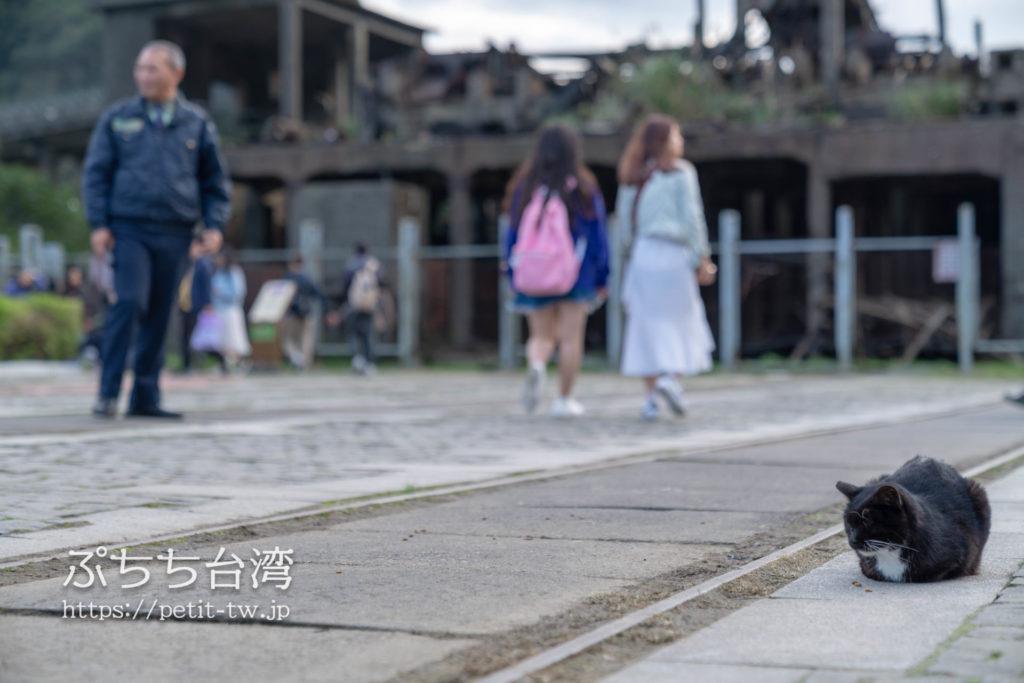 台湾の猴硐猫村の駅前の広場